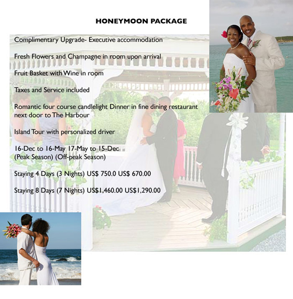 wedding_montage_honeym